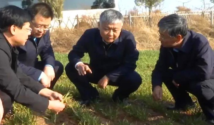 乡宁县委书记杨建军在昌宁镇调研指导春耕备耕工作